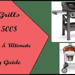 Best Grills Under 500$-s